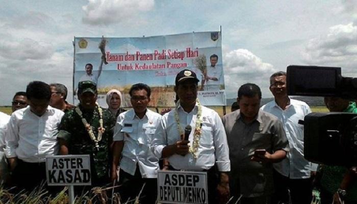 Menteri Pertanian Amran Sulaiman dan sejumlah pejabat daerah melaksanakan panen raya padi di Purwodadi, Jawa Tengah, Selasa 23 Januari 2018. Foto. Dok. Istimewa