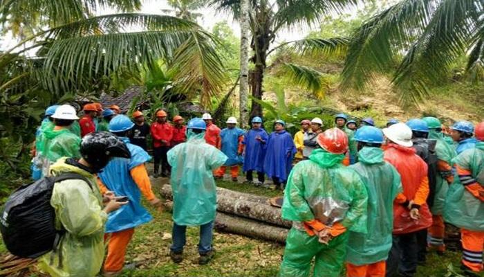 PT Perusahaan Listrik Negara (PLN) Distribusi Jawa Timur meninjau lokasi Tower SUTT di Pacitan yang ronoh. Foto: Dok. Istimewa