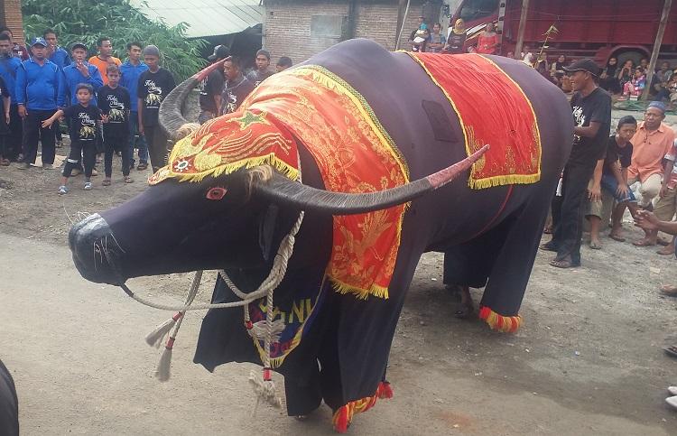 Pertunjukan Kesenian Kebo Ndanu khas Ponorogo (Foto: Nurcholis/Nusantaranews)