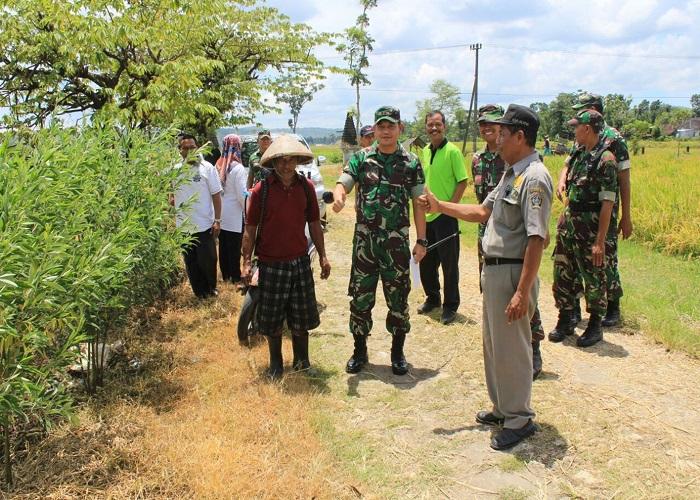 Komandan Kodim 0808 Blitar Letkol Inf Kris Bianto mengunjungi petani untuk berkoordinasi soal serapan gabah. (Foto: Istimewa)