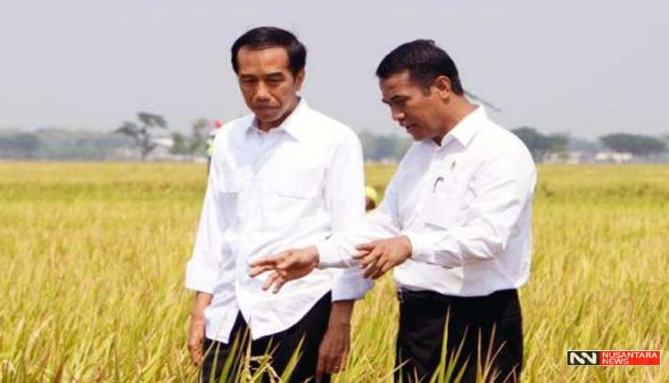 Jokowi dan Amran Sulaiman (Foto Istimewa)