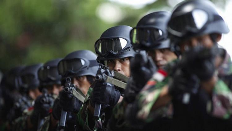 Pasukan TNI (Ilustrasi/Istimewa)