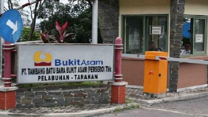 CBA Minta Penyidik KPK Menyidik Pendapatan PT. Bukit Asam. (FOTO: Istimewa)
