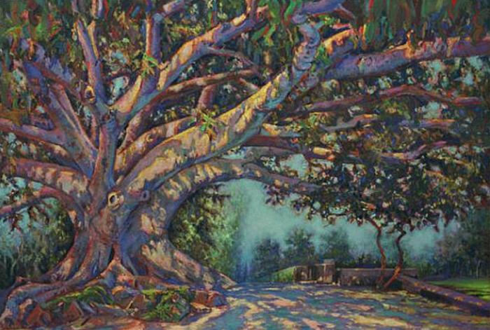 Pohon Beringin (Rodeo Drive Banyan/etsy.com)