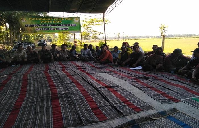 Kelompok Tani Rukun Warga Dusun Demangan Desa Kesilir, Wuluhan, Jember menggelar acara temu tani dan selamatan petik panen padi pada Kamis (5/4/2018).