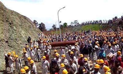 Para Pekerja Tambang di Marowali (Foto Istimewa)