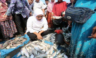 Khofifah Janji Sulap Pasar Ikan Lamongan Seperti Plaza Ikan Korsel