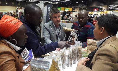Para pengunjung event internasional Global Specialty Coffee Expo di Seattle, Amerika Serikat, Minggu (22/4/2018) mencicipi kopi Gayo Aceh. (Foto: Istimewa)