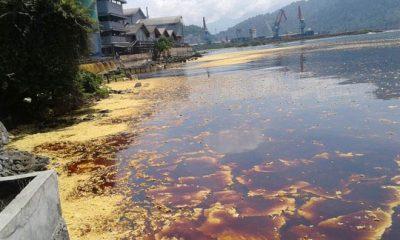 Pemerintah Diminta Jangan Diam Insiden Dugaan Minyak Tumpah di Kepulauan Seribu