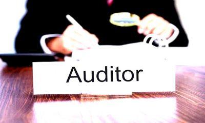 kepentingan investor, auditor, auditor adalah, peran auditor, fungsi auditor, audit keuangan, audit going concern, audit, opini audit, status going concern, reputasi auditor, standar akuntansi publik, opini auditor