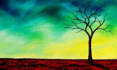 Steadfast, Foto: Bing Art by Rachel Bingaman