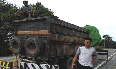 illegal logging, satgas pamtas ri-malaysia, yonif 511/dy, balai karangan, perbatasan malaysia, perbatasan indonesia-malaysia, satuan tugas tni, kayu ilegal