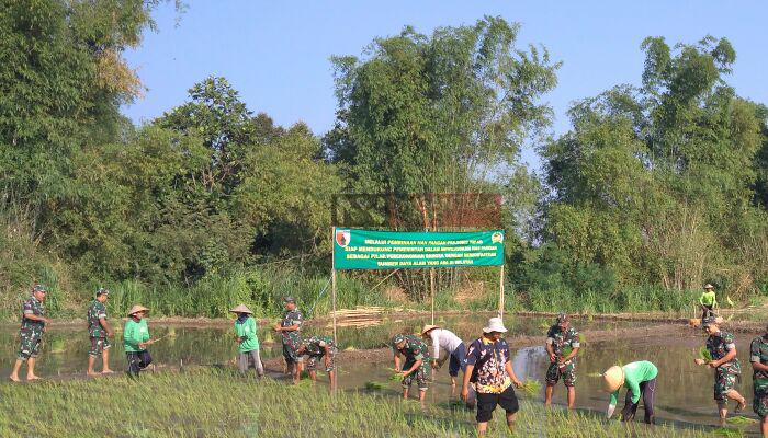 Tanam Padi Massal Lewat Pembinaan Ketahanan Pangan. (FOTO: NUSANTARANEWS.CO/Candra Yuniarti)