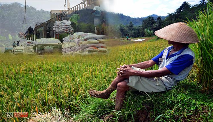 Petani Indonesia (Ilustrasi Nusantaranews)