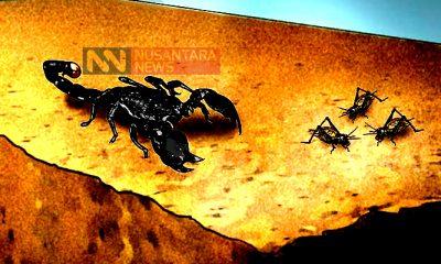 (Ilustrasi) Waktu, Kalajenking dan Tambang. (Ilustrasi: NUSANTARANEWS.CO)