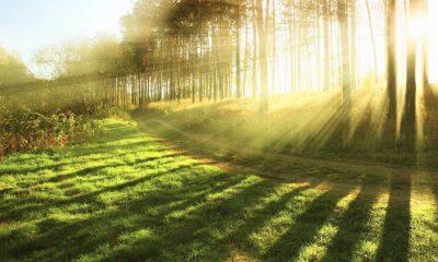 Spektrum Cahaya Matahari (Ilustrasi/Nusantaranews)