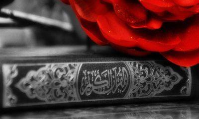 Puisi Nuzulul Qur'an. (Ilustrasi: NUSANTARANEWS.CO/istimewa)
