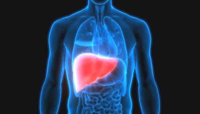 hepatitis, hari hepatitis sedunia, pengidap hepatitis, pengidap hepatitis indonesia, penyakit hepatitis, pegobatan hepatitis, nusantaranews