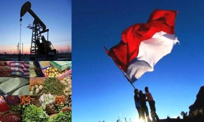 ketahanan pangan, ketahanan energi, pangan dan energi, pangan indonesia, energi indonesia, migas indonesia, swasembada pangan, impor pangan, impor energi, nusantaranews