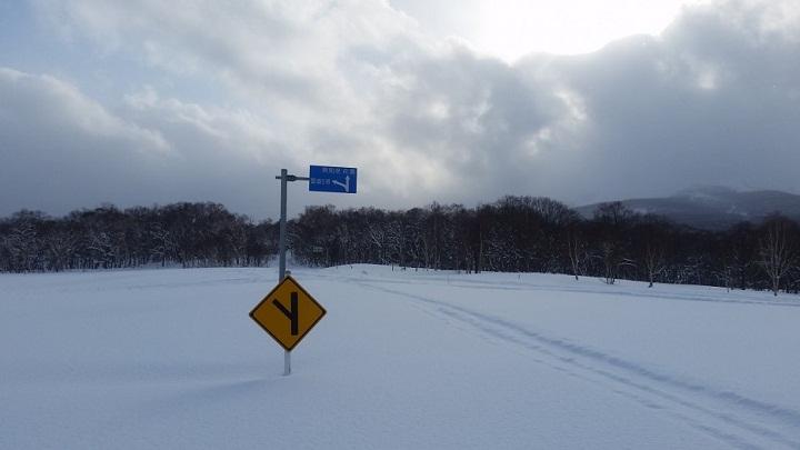 Musim Dingin di Niseko, Hokkaido. (FOTO; Japan Travel)