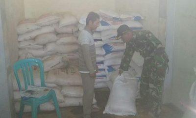 Pengawasan Pendistribusian Pupuk Bersubsidi Terus Diperketat oleh Babinsa. (FOTO: NUSANTARANEWS.CO/Candra Yuniarti/Penrem 082/CPYJ)