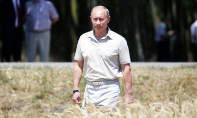 Presiden Putin Melarang Penggunaan Benig Transgenik.docx