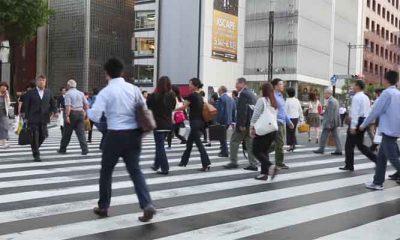 Pelican Crossing di Jepang (Ilustrasi)