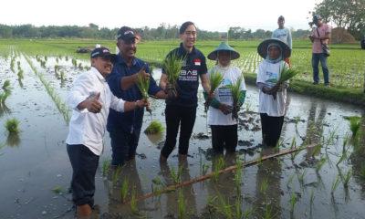 petani indonesia, hari tani nasional, petani makmur, petani sejahtera, ibas, putra sby, nasib petani, negara agraris, nusantaranews, nusantara news, nusantara
