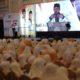 Pendidikan Kader, PKS Jatim Target Menang Pemilu 2019. (FOTO: NUSANTARANEWS.CO/Setya)