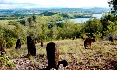 emuan Kampung Tua di Danau Sentani, Jayapura, Papua. (FOTO: Istimewa)