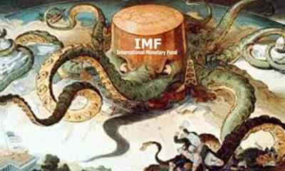 Gurita IMF (Ilustrasi)