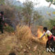 Kebakaran Hutan (Foto: Nurcholis/Nusantaranews)Kebakaran Hutan (Foto: Nurcholis/Nusantaranews)