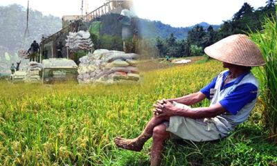 Fadli Zon: Percuma Bicara Revolusi Industri 4.0 tanpa Menjadikan Petani Sebagai Pengusaha Baru