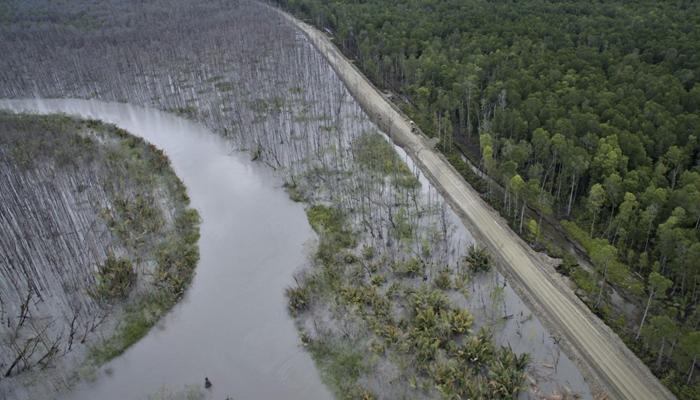 Kerusakan Lingkungan dan Ekosistem Akibah Limbah Tambang (Foto Ilustrasi)