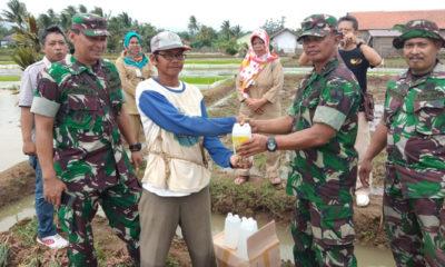 Seorang Anggota TNI Sosialisasikan Pupuk Wijayakusuma Kepada Petani (Foto Istimewa)