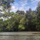 Salah satu pemandangan alam di Kalimantan Barat (Kalbar). (Foto: Ilustrasi/NUSANTARANEWS.CO/Eriec Dieda)