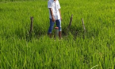 pengolahan limbah, lamongan, lahan pertanian produktif, dprd jatim, brondong lamongan, limbah beracun, nusantaranews