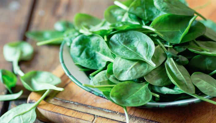 Sayur Bayam Rendah Kalori Cocok Untuk Menu Diet (Foto Istimewa)