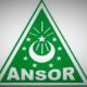 Logo GP Ansor. (Foto: IST)