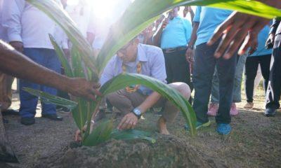 Cawapres Sandiaga menanam tunas kelapa di pulau Mansinam, Papua Barat saat kampanye. (FOTO: Dok. @sandiuno)
