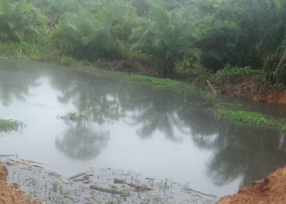 pt nsm, pabrik cpo, nunukan, cemari sungai, limbah pabrik, masyarakat, nusantaranews