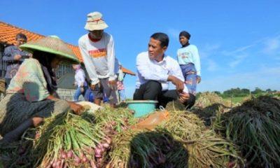 Mentan Amran Sulaiman bersama petani bawang merah di Brebes, Jawa Tengah. (FOTO: Istimewa)