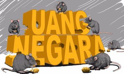 Tikus Berpeci. (FOTO: Dok. Detik)