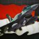 Jet Tempur f16 TNI AU diremajakan. (FOTO: Dok. HobbyMiliter)