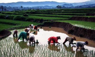 Impor Indonesia meningkat tajam