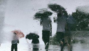 kemarau, cerita hujan, puisi kemarau, puisi hujan, kumpulan puisi, mim a mursyid, nusantaranews