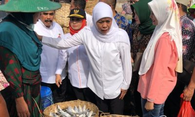 Harga Ikan Tambak di Lamongan Anjlok, Gubernur Jatim Khofifah Indar Parawansa Bidik Eksport ke Panama. (Foto: Setya/NUSANTARANEWS.CO)