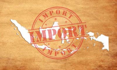 Indonesia Negara Importir
