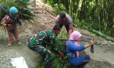 Masyarakat Dompyong dan Sumurup Rindu Jalan yang Layak saat mencari rumput. (FOTO: NUSANTARANEWS.CO)