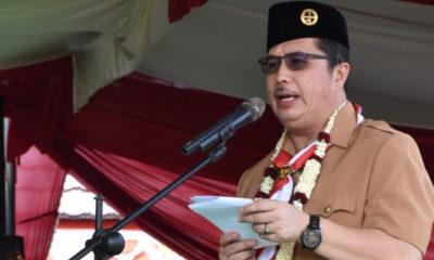 Sekretaris Komisi Pengabdian Masyarakat Kwarnas Gerakan Pramuka Laliansa Irawan. (Foto Istimewa Untuk NUSANTARANEWS.CO)